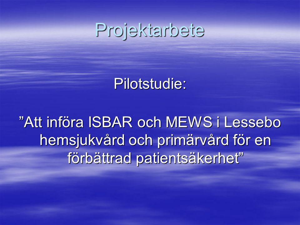 Projektarbete Pilotstudie:
