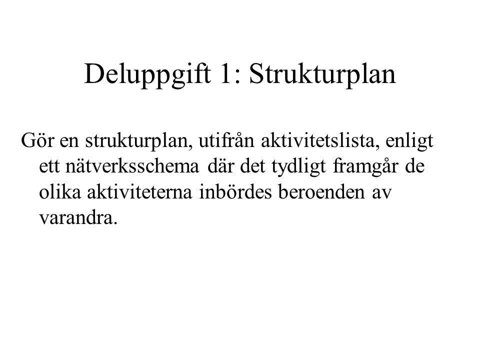 Deluppgift 1: Strukturplan