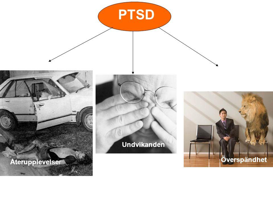 PTSD Undvikanden Överspändhet Återupplevelser