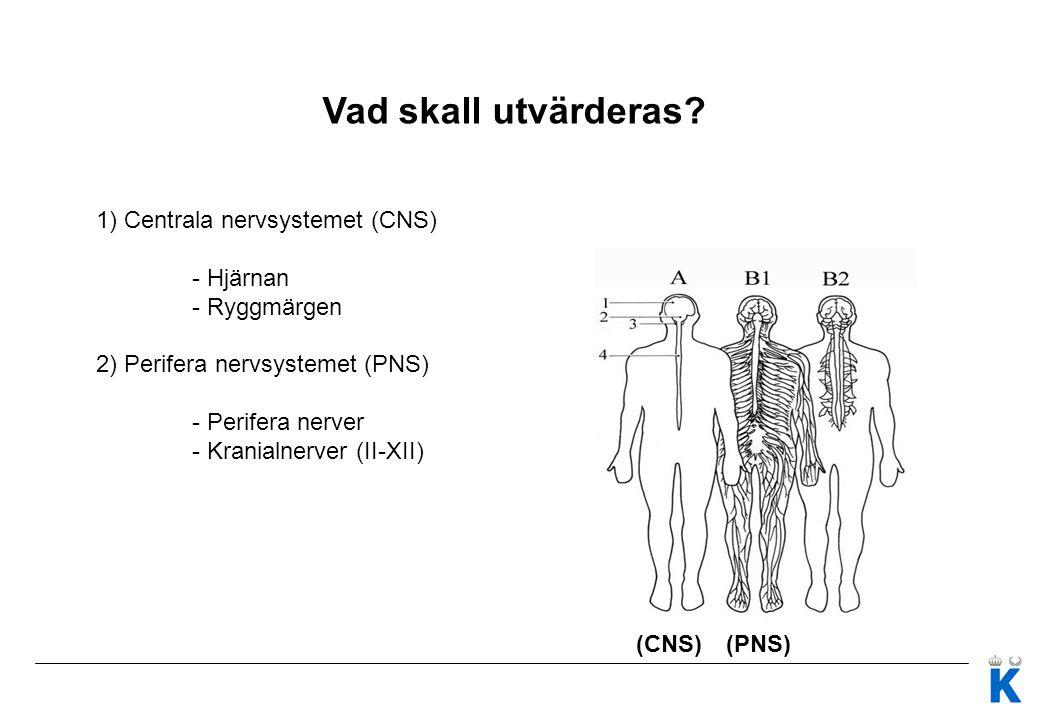 Vad skall utvärderas 1) Centrala nervsystemet (CNS) - Hjärnan