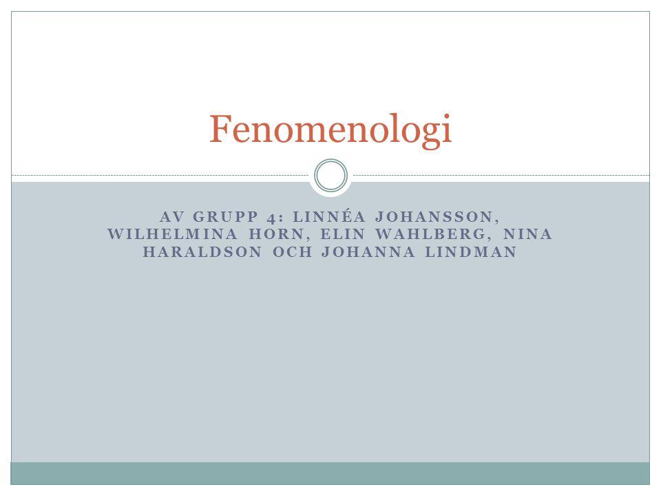Fenomenologi Av grupp 4: Linnéa Johansson, Wilhelmina Horn, Elin Wahlberg, Nina Haraldson och Johanna Lindman.