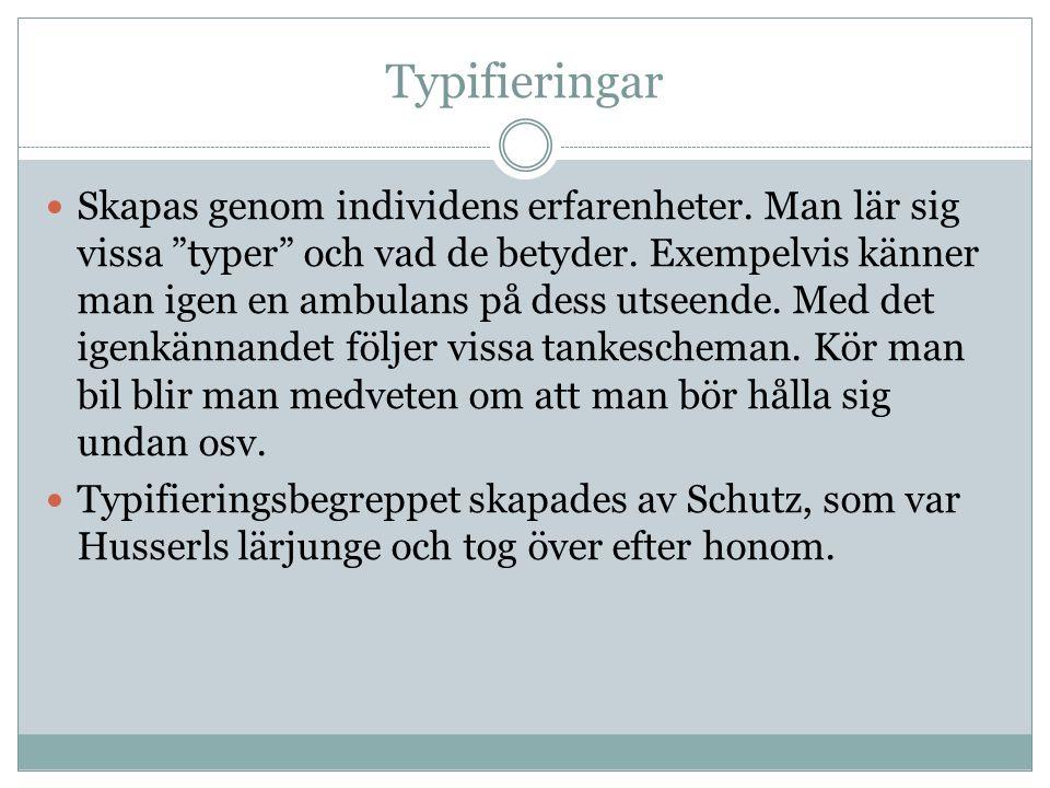 Typifieringar