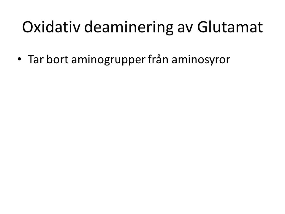 Oxidativ deaminering av Glutamat