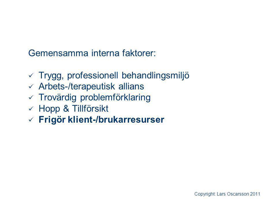Gemensamma interna faktorer: Trygg, professionell behandlingsmiljö