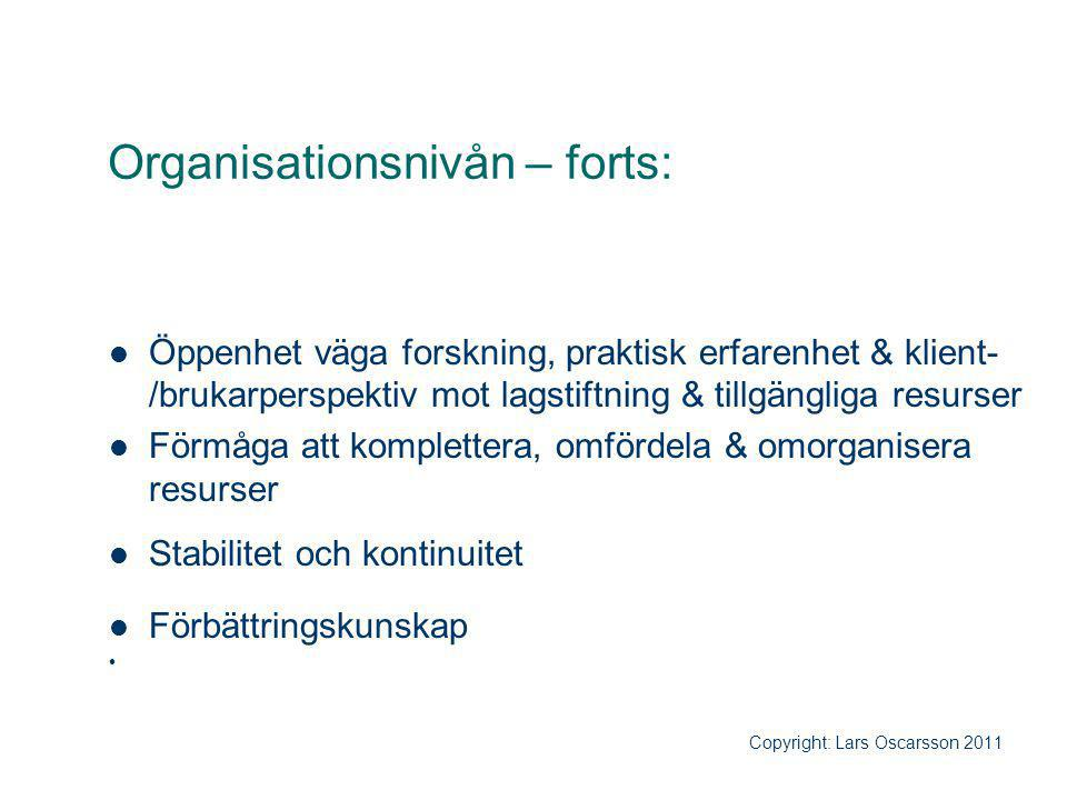 Organisationsnivån – forts: