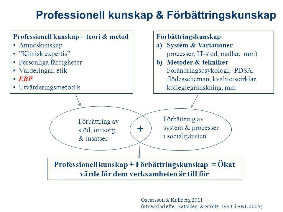 Professionell kunskap & Förbättringskunskap
