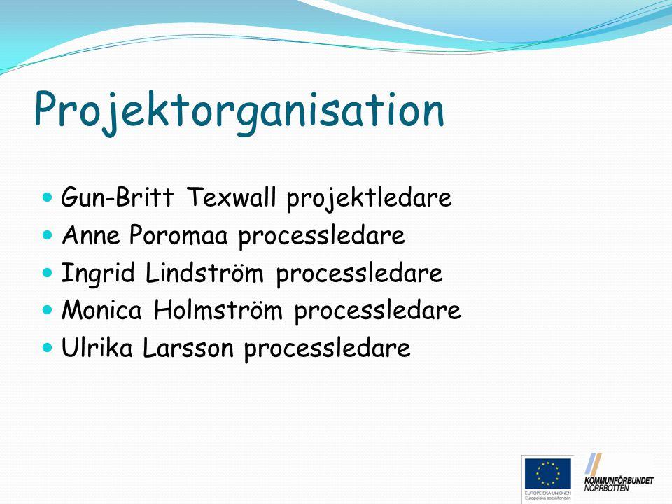 Projektorganisation Gun-Britt Texwall projektledare
