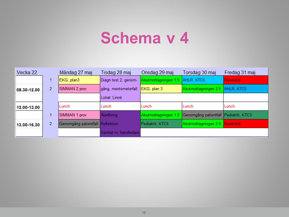 Schema v 4