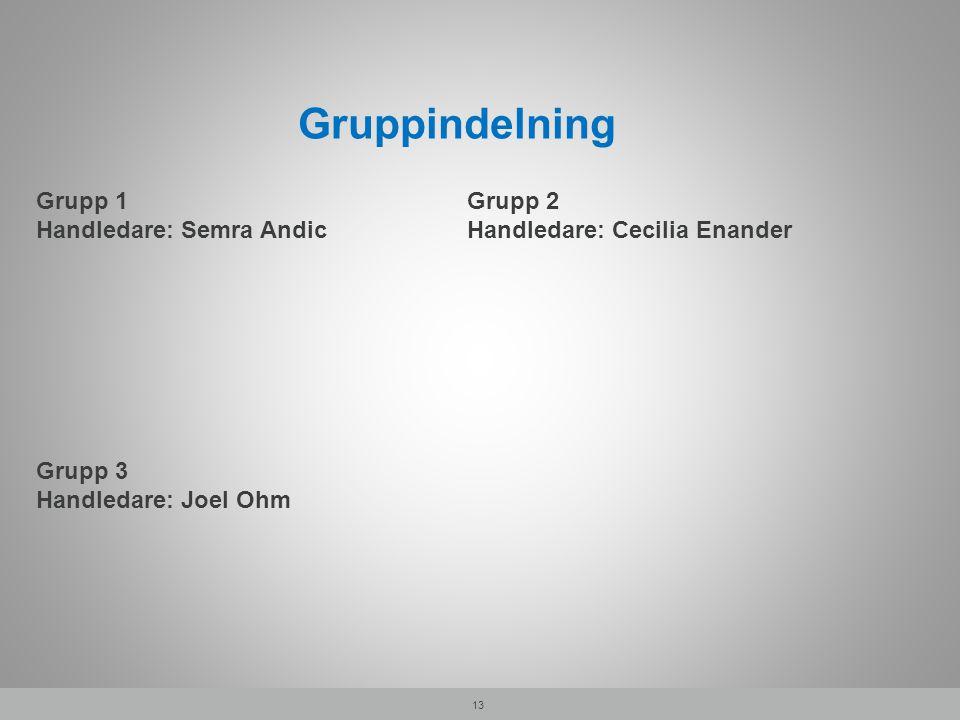 Gruppindelning Grupp 1 Handledare: Semra Andic Grupp 2