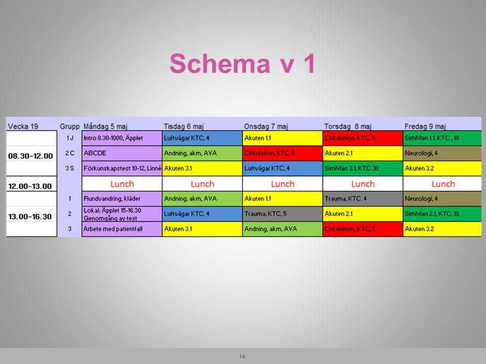 Schema v 1