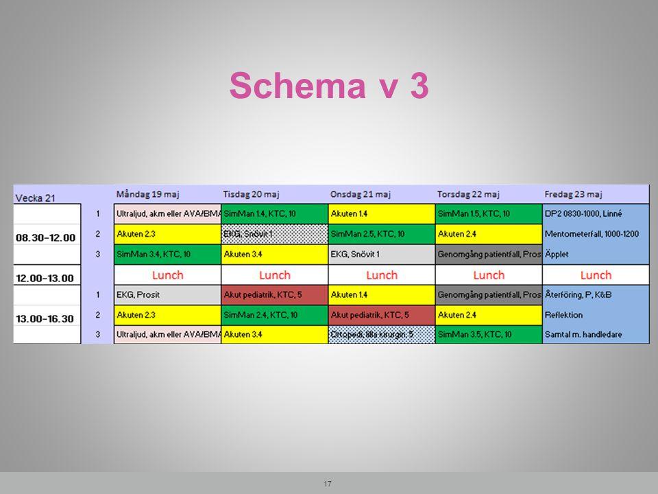 Schema v 3