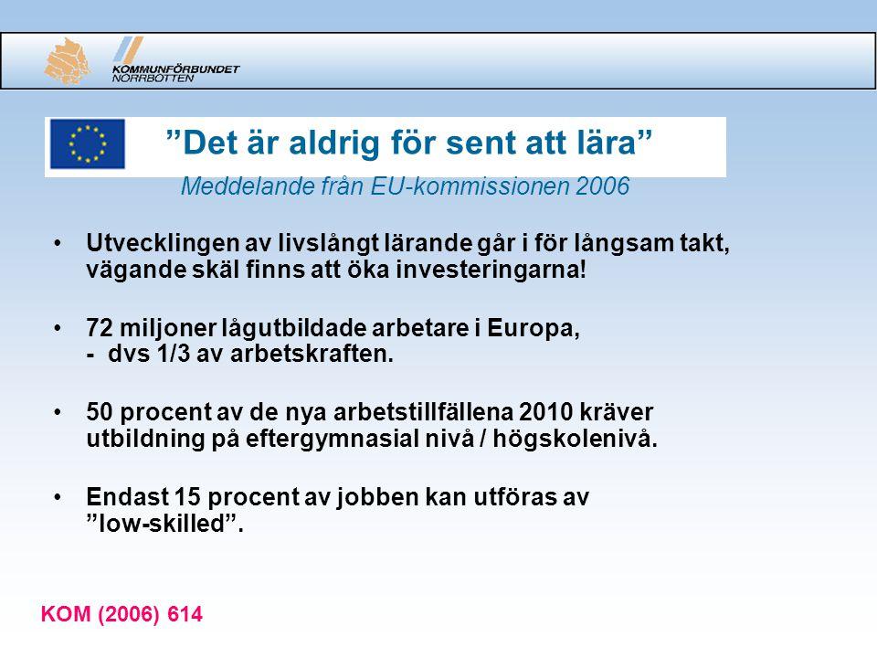 Det är aldrig för sent att lära Meddelande från EU-kommissionen 2006
