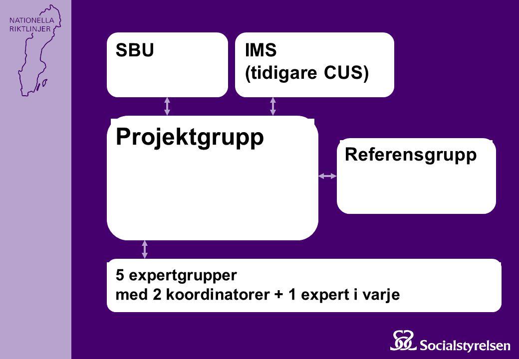 Projektgrupp SBU IMS (tidigare CUS) Referensgrupp