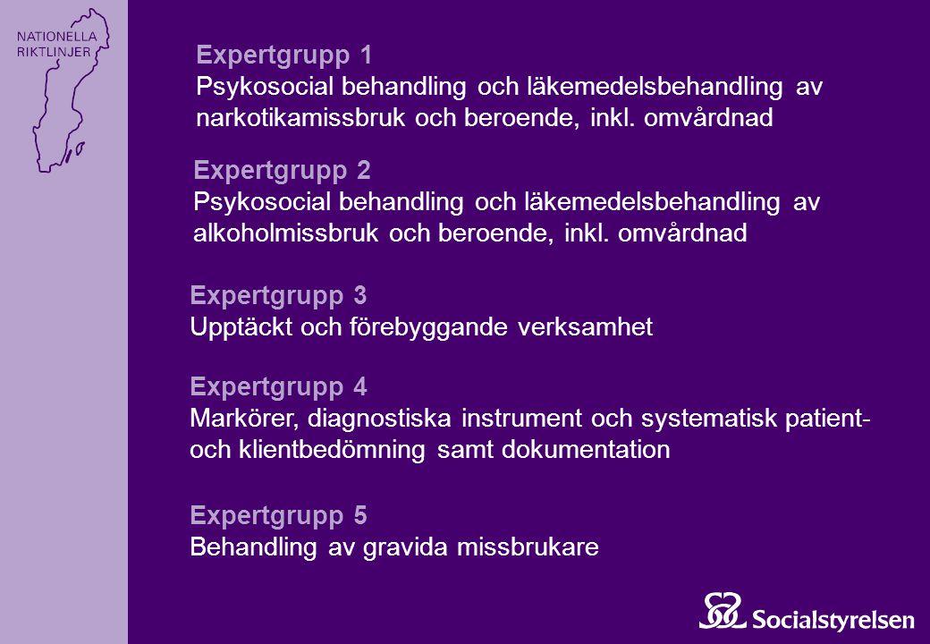 Expertgrupp 1 Psykosocial behandling och läkemedelsbehandling av narkotikamissbruk och beroende, inkl. omvårdnad.