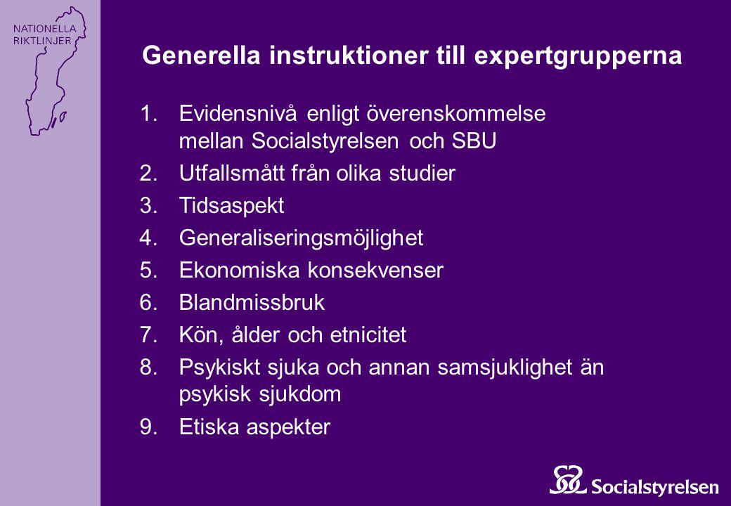 Generella instruktioner till expertgrupperna