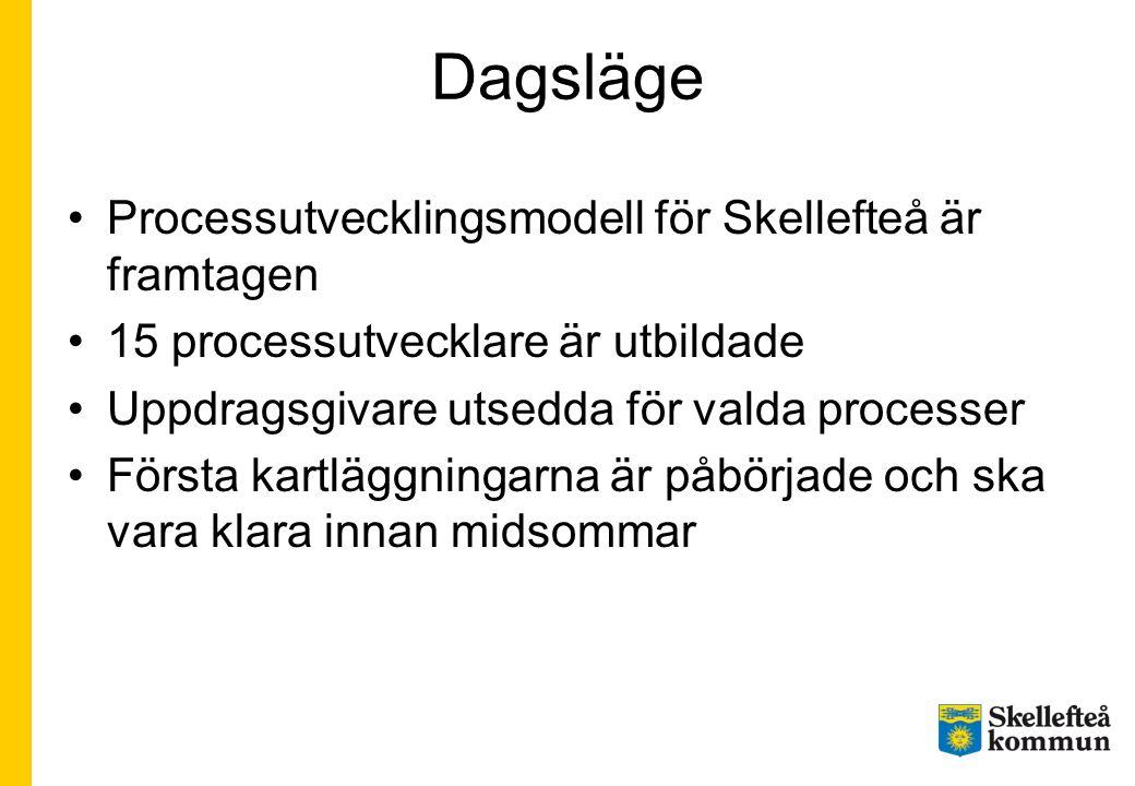 Dagsläge Processutvecklingsmodell för Skellefteå är framtagen