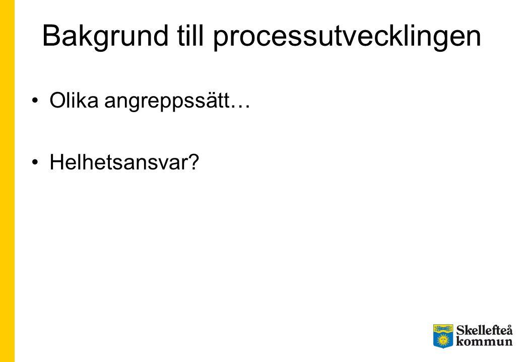 Bakgrund till processutvecklingen