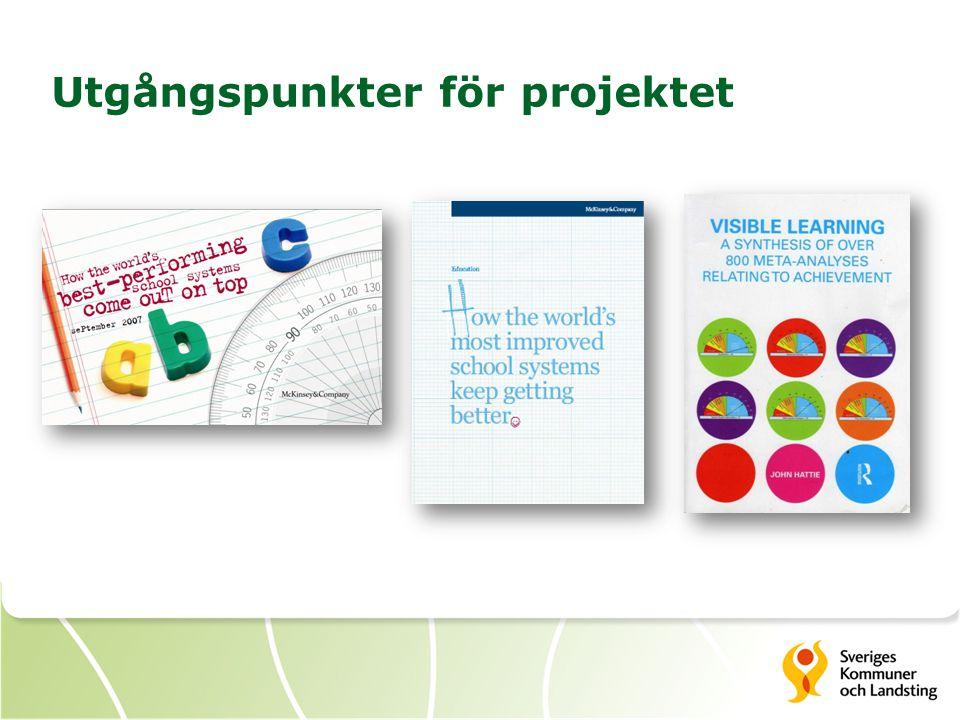 Utgångspunkter för projektet