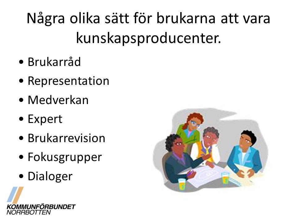 Några olika sätt för brukarna att vara kunskapsproducenter.