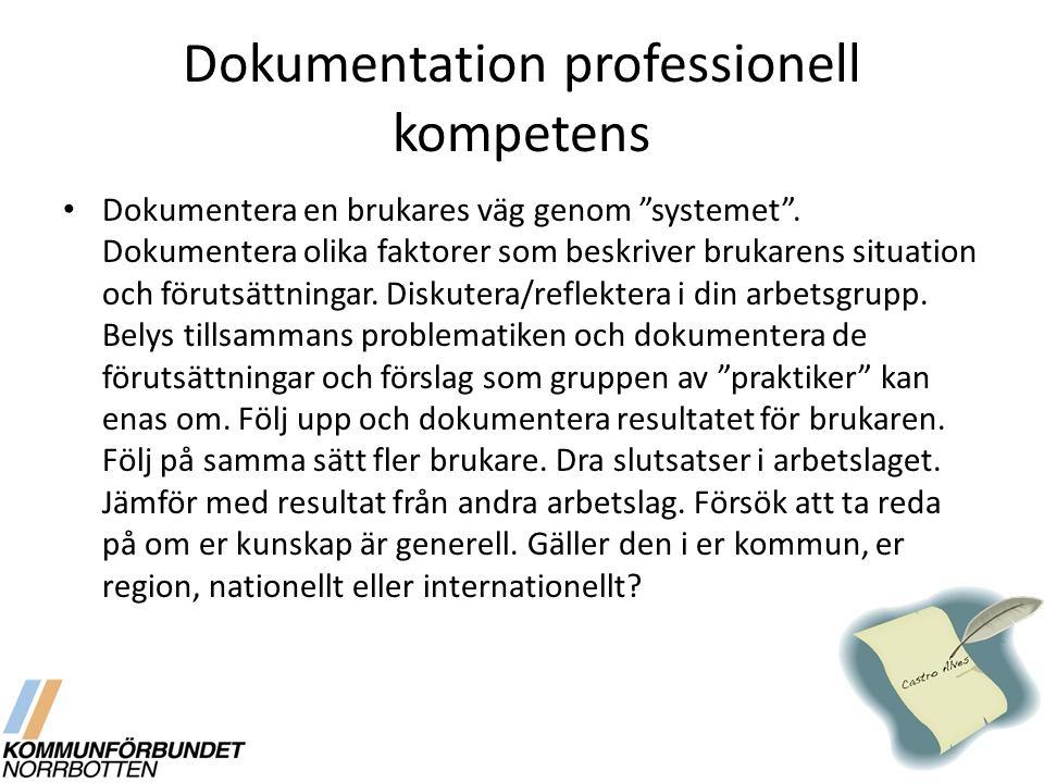 Dokumentation professionell kompetens