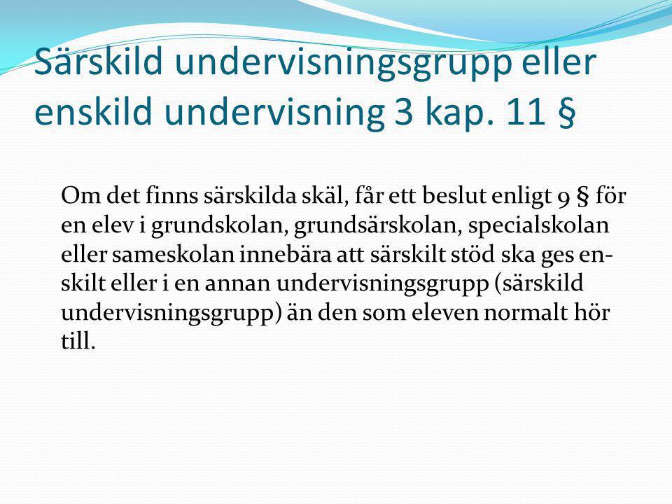 Särskild undervisningsgrupp eller enskild undervisning 3 kap. 11 §