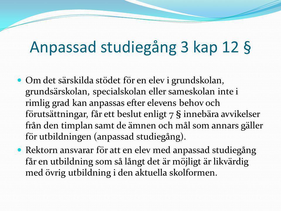 Anpassad studiegång 3 kap 12 §