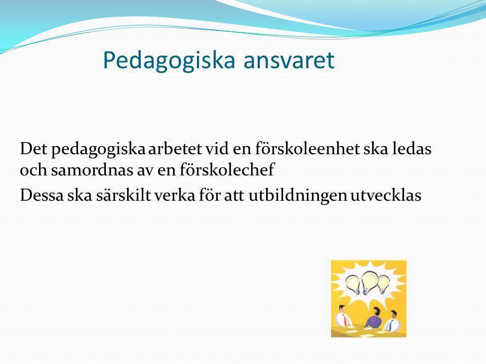 Pedagogiska ansvaret
