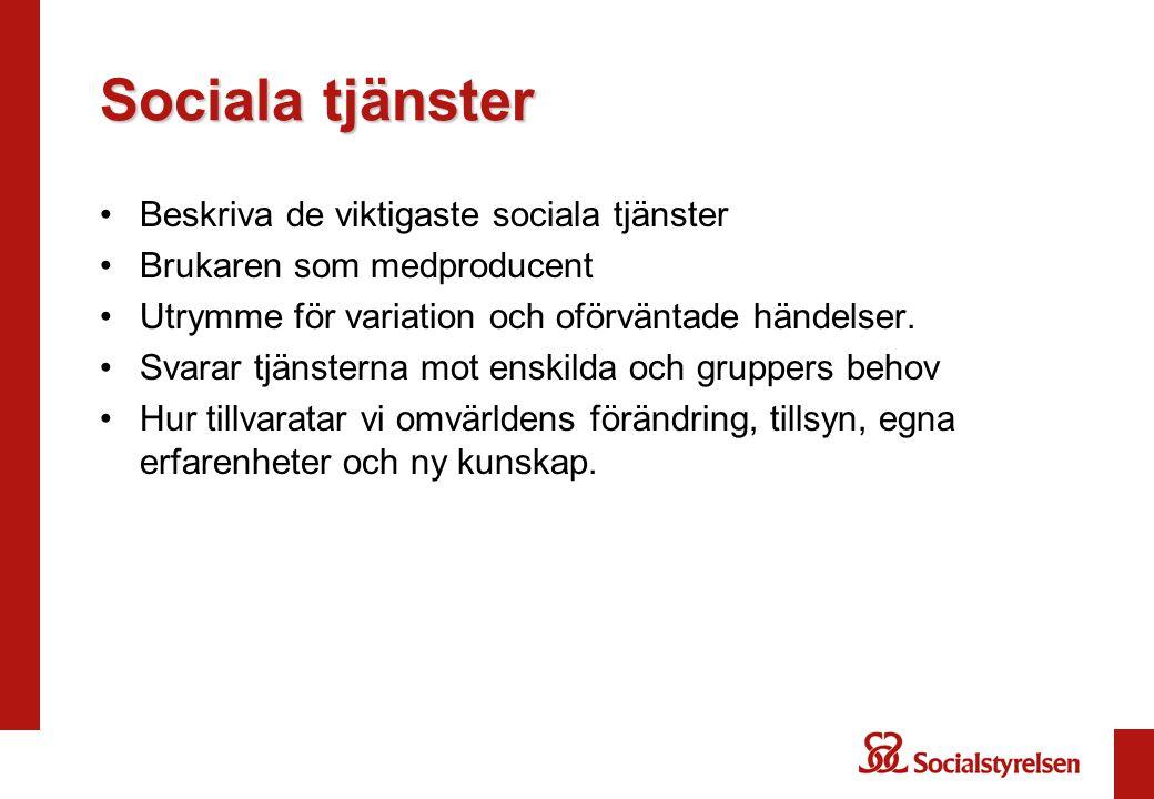 Sociala tjänster Beskriva de viktigaste sociala tjänster