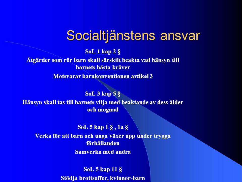 Socialtjänstens ansvar