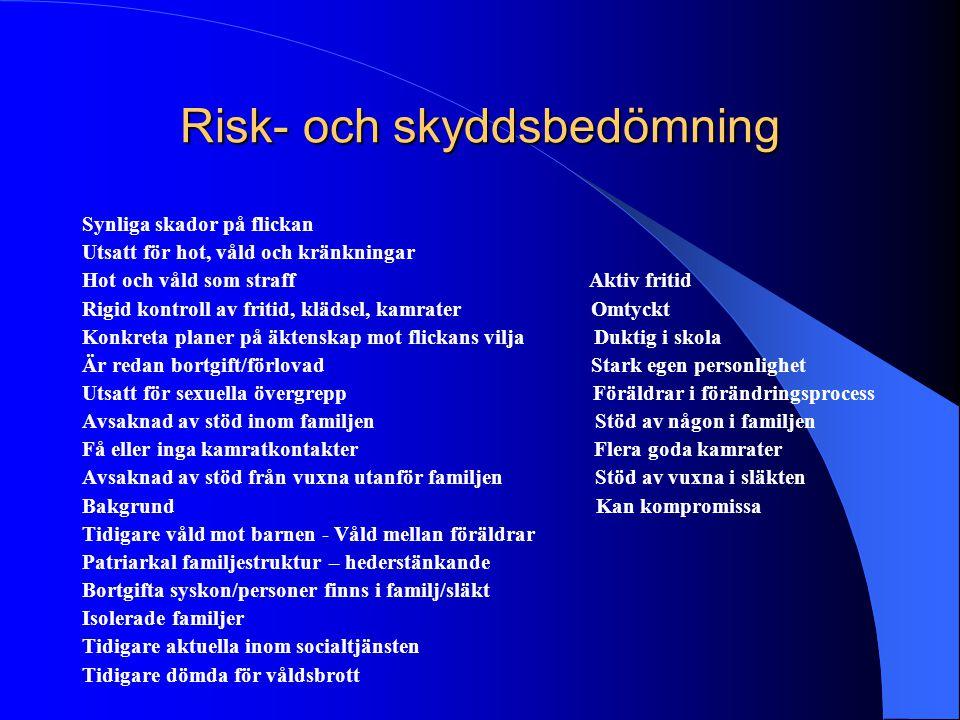 Risk- och skyddsbedömning