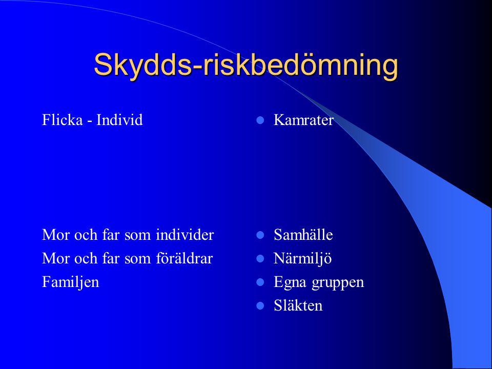 Skydds-riskbedömning
