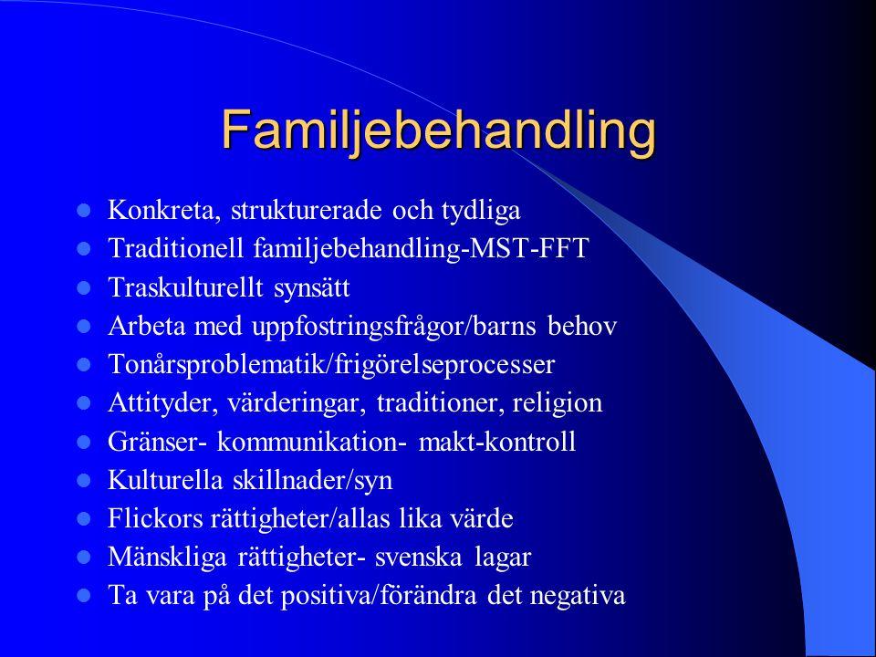 Familjebehandling Konkreta, strukturerade och tydliga