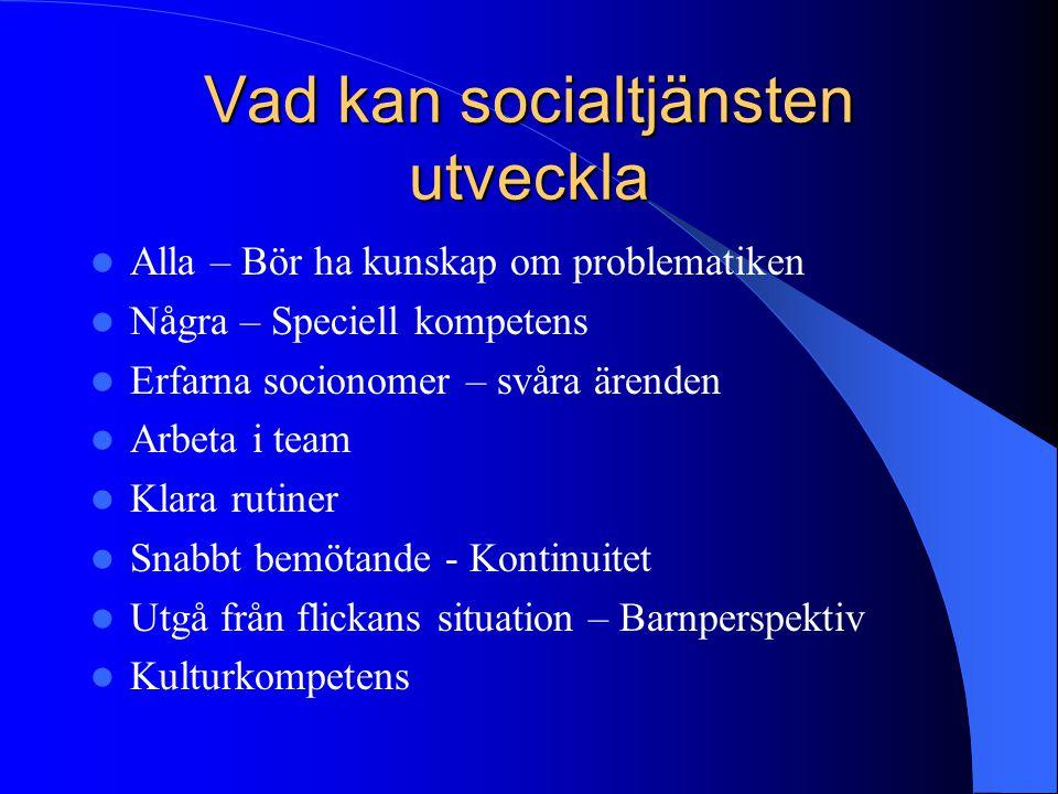 Vad kan socialtjänsten utveckla
