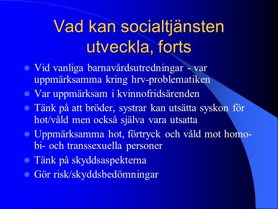 Vad kan socialtjänsten utveckla, forts