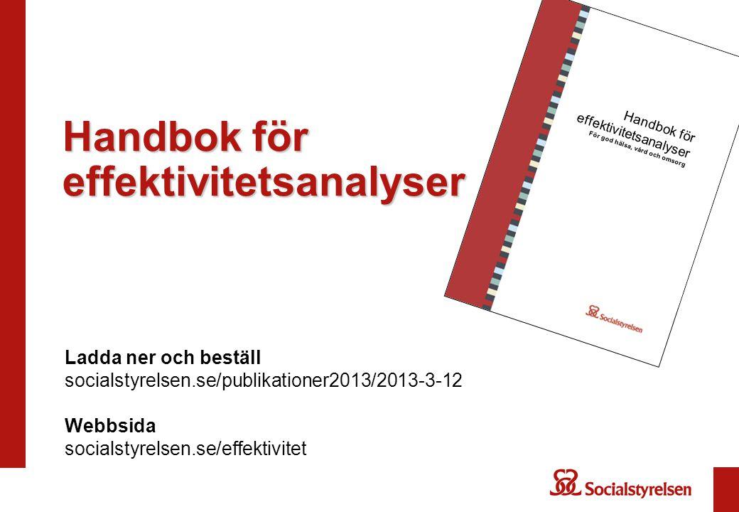 Handbok för effektivitetsanalyser