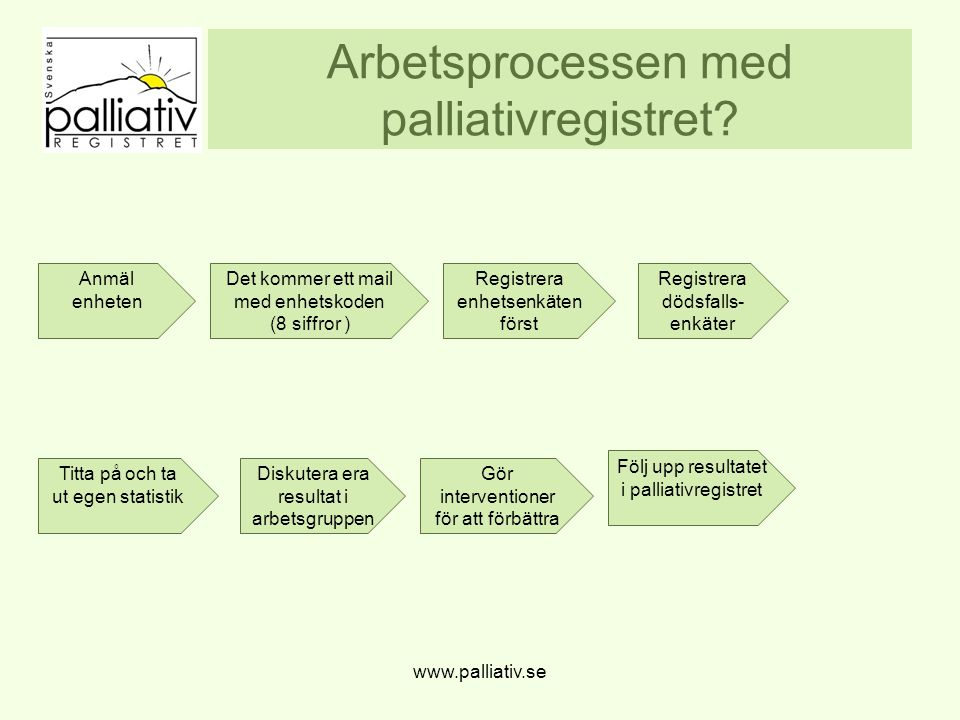 Arbetsprocessen med palliativregistret