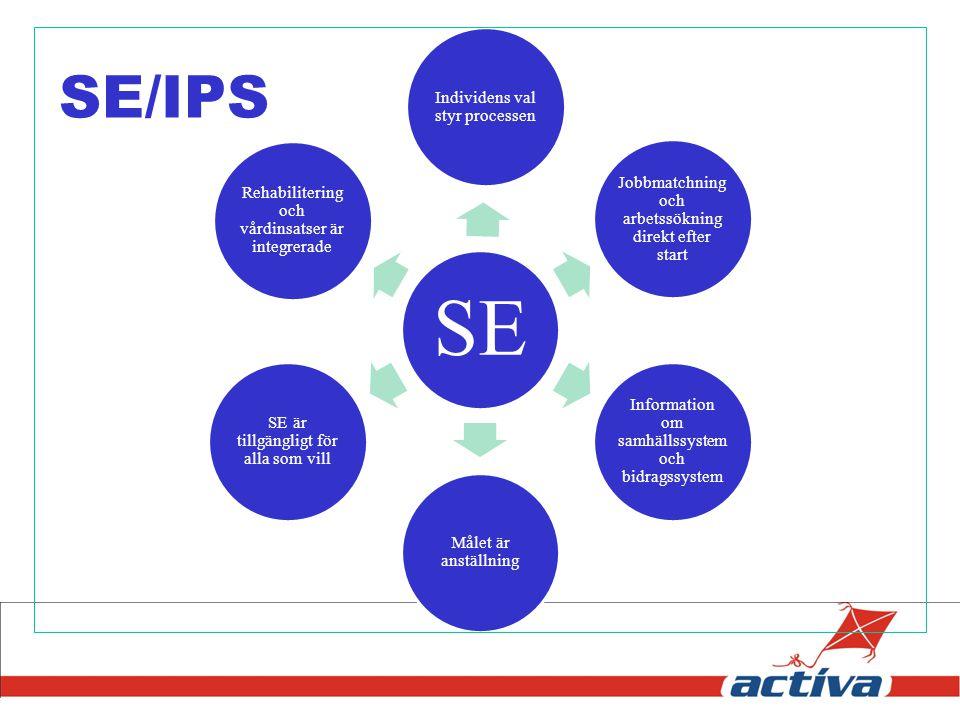 SE/IPS SE Individens val styr processen
