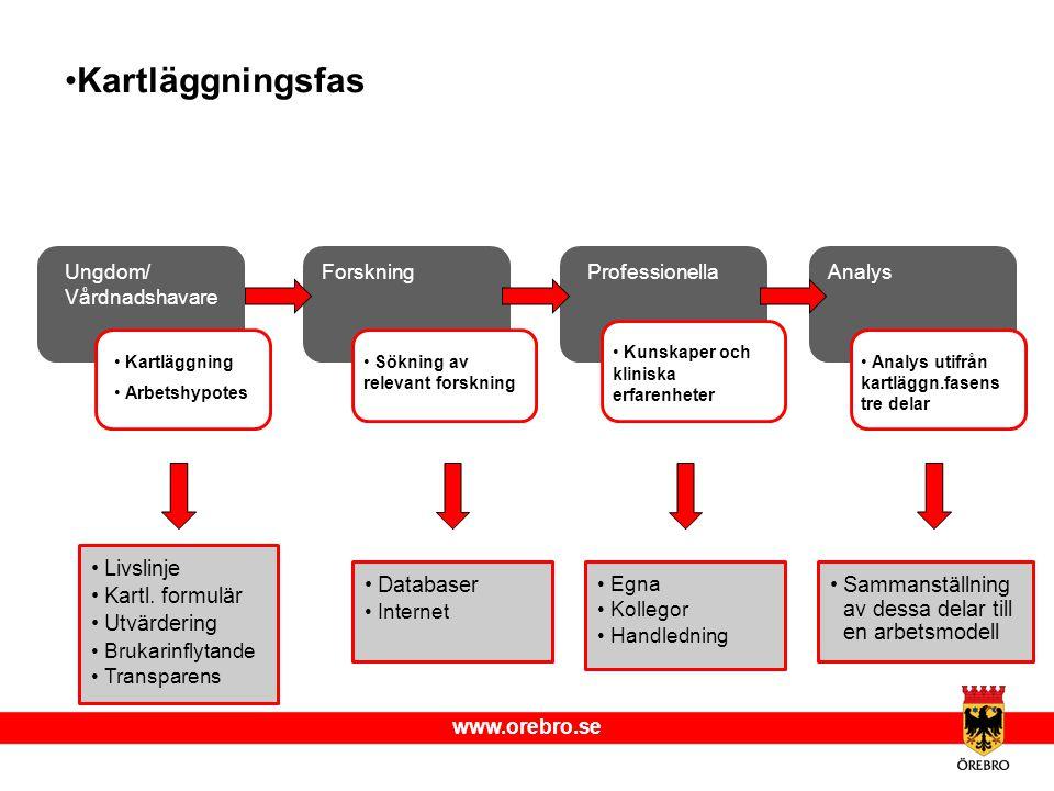 Kartläggningsfas Livslinje Kartl. formulär Utvärdering Databaser