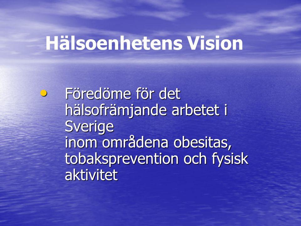 Hälsoenhetens Vision