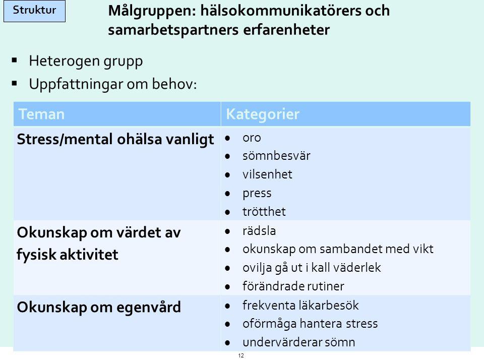 Målgruppen: hälsokommunikatörers och samarbetspartners erfarenheter