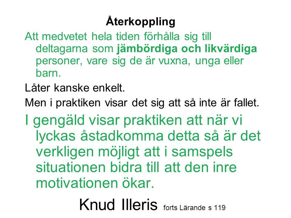 Knud Illeris forts Lärande s 119