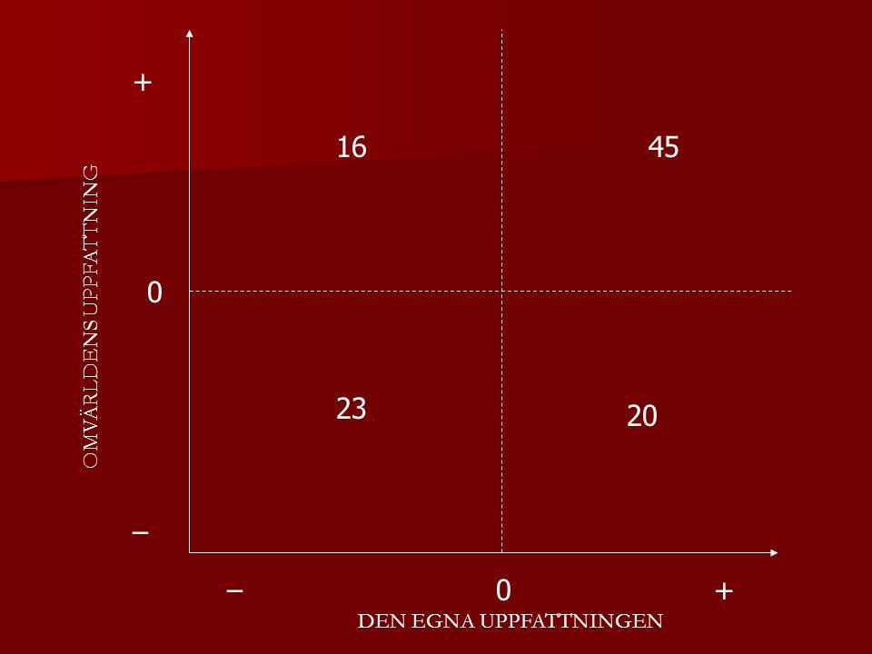 + 16 45 OMVÄRLDENS UPPFATTNING 23 20 – – + DEN EGNA UPPFATTNINGEN
