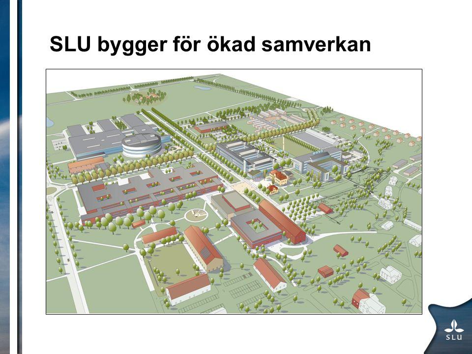 SLU bygger för ökad samverkan