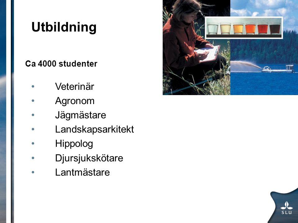 Utbildning Veterinär Agronom Jägmästare Landskapsarkitekt Hippolog
