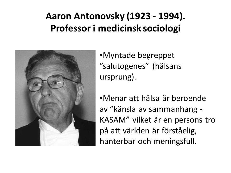 Professor i medicinsk sociologi