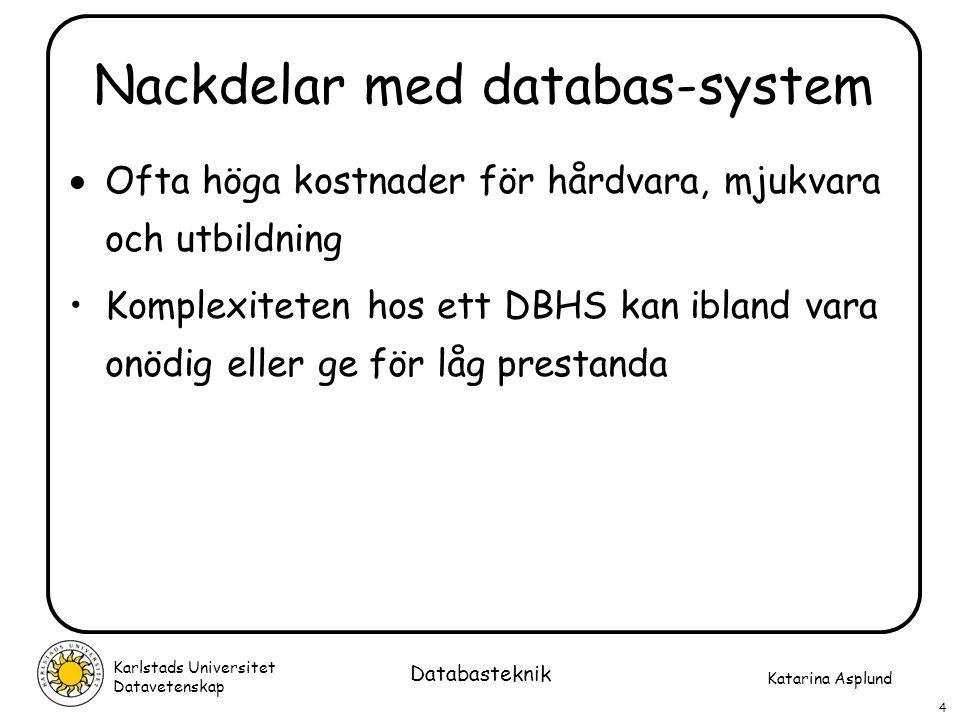 Nackdelar med databas-system