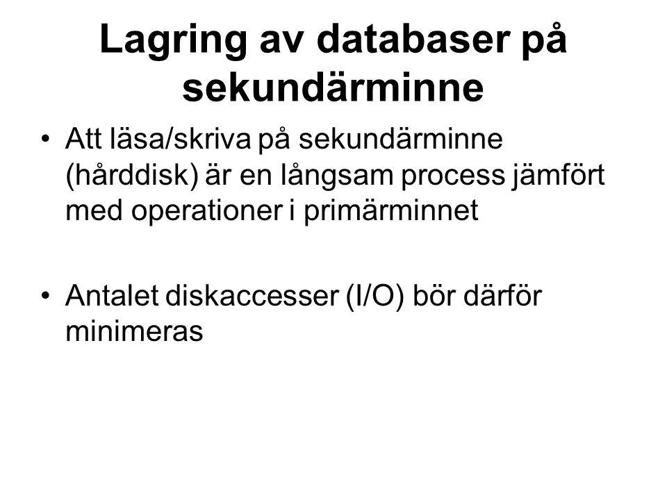 Lagring av databaser på sekundärminne