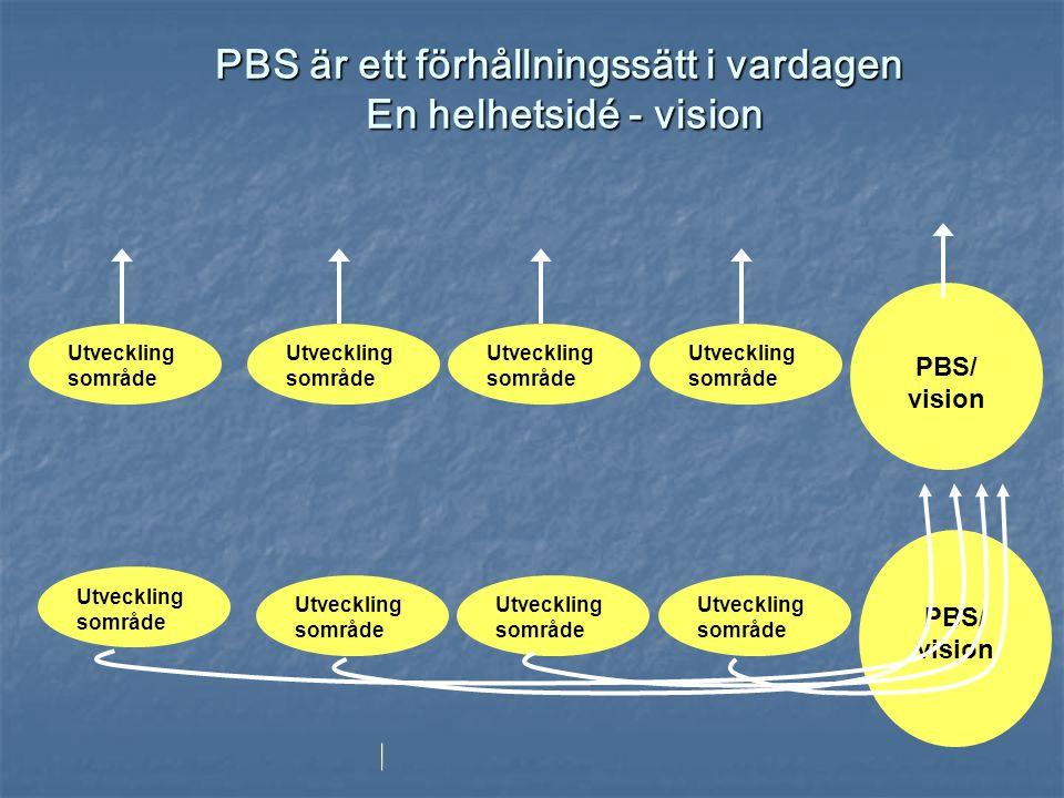PBS är ett förhållningssätt i vardagen En helhetsidé - vision