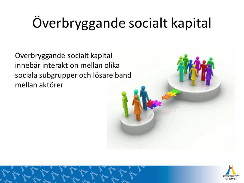 Överbryggande socialt kapital