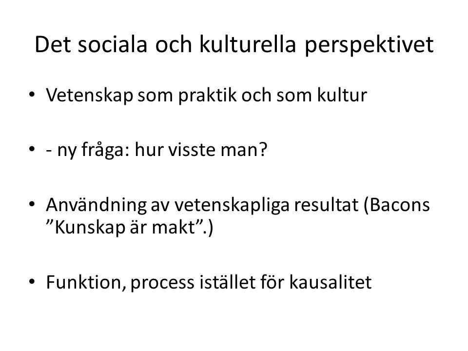 Det sociala och kulturella perspektivet